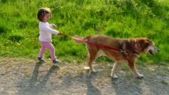 Happy Little Girl Having Fun Walking Dog Pet In Countryside Stock Footage