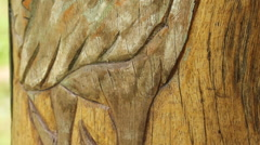 Old Carving in PALAU Stock Footage