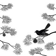Titmouse on pine branch, cutout - stock illustration