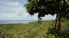 Southern Coastline of the Babeldaob on Palau Stock Footage