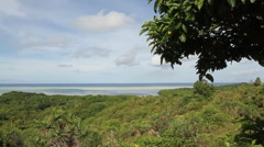 Scenic Island Beach Environment in PALAU Stock Footage