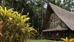 Free Standing Jungle Hut in PALAU - stock footage