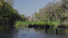 Still water on a pond at Hibiya park in Tokyo Stock Footage