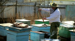 Beekeeper inspection control framework in apiary with bee honey - stock footage