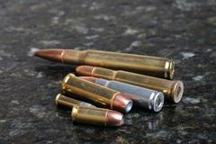 Pile of several different bullets. Stock Photos