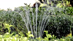 Water fountain in garden Stock Footage