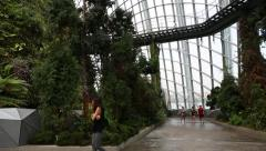 Conservatory Cloud Forest on the territory Park Gardens by the Bay in Singapore Stock Footage