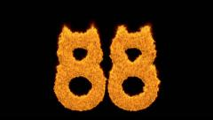 Burning fiery number 88 on black Stock Footage