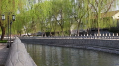 Willow and canal Stock Footage