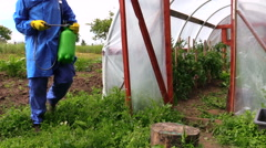 Farmer man walk in farm greenhouse hothouse with sprinkler tool Stock Footage