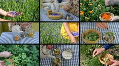 Hands gather herbs and make herbal tea. Footage collage Stock Footage