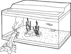 Outlined Fish Tank with Hole Stock Illustration