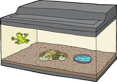 Stock Illustration of Cartoon of Frog in Aquarium