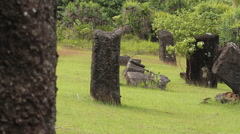 Pacific Graveyard with Tourist in PALAU Stock Footage