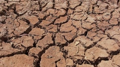 Dryness pond - stock footage