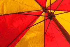 Giant red and yellow umbrella against a palm leaf in the botany garden - stock photo