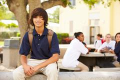Portrait Of Male High School Student Wearing Uniform Stock Photos