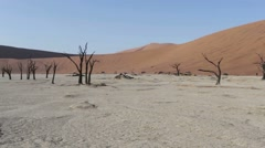 Beautiful sunrise landscape of hidden Dead Vlei in Namib desert with blue sky Stock Footage