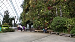 Stock Video Footage of Conservatory Cloud Forest on the territory Park Gardens by the Bay in Singapore