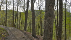 Mammoth Cave National Park Bluff Trail Slider Cinematic Stock Footage
