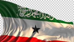 Flag of Somaliland Stock Footage