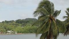 Coastline Neighborhood on the Island of PALAU Stock Footage