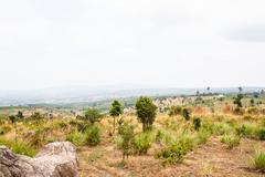 Mountain Thailand drought - stock photo