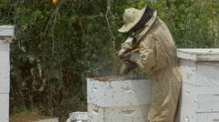 Beekeeper, Beehive, Bees Stock Footage