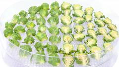 Time-lapse of drying Brussels sprouts UHD 4K Stock Footage