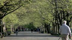 Riverside Park Stock Footage