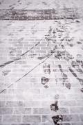 Steps on the winter trail Kuvituskuvat