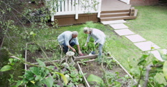 Senior couple working in the yard Stock Footage