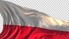 Flag of Poland Stock Footage