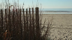 Fenced beach with winter sea grass Stock Footage