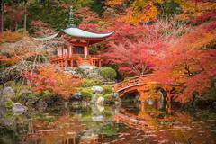 Daigoji temple in maple trees, momiji season, Kyoto, Japan - stock photo