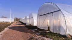 Organic food Greenhouses in the countryside Stock Footage