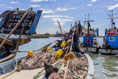 Fishing boat and fishing nets - stock photo