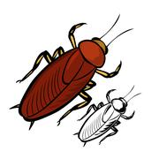 Cockroach - stock illustration