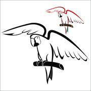 Parrot on branch - stock illustration