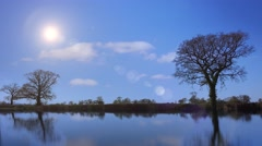 Ambient countryside reflections of trees and clouds Stock Footage