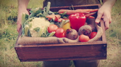 Happy farmer carrying box of veg Stock Footage