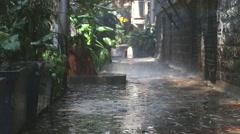 Rain falling on plants in empty street in Mumbai. Stock Footage
