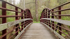 Bridge sping dogwood blooms Stock Footage
