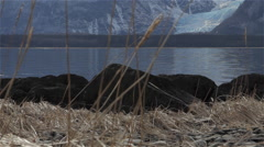 Davidson Glacier Chilkat Shoreline With Fore Ground Stock Footage
