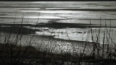 Glistneing Tidal Mud Flats Stock Footage