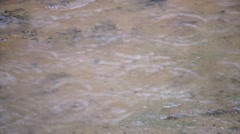Drizzling rain on mud pool Stock Footage