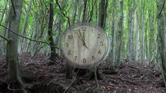 time lapse of a watch over a forest - stock footage