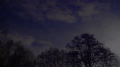 The UFO light spots above the forest at night. Shot with Red Cinema Camera Stock Footage