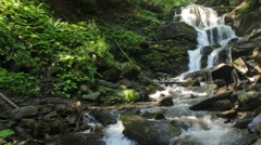beautiful waterfall comes out of a huge rock in the forest - stock footage