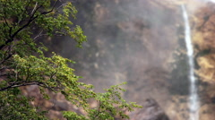 Timelapse - Tree swaying in a breeze close to the waterfall Stock Footage